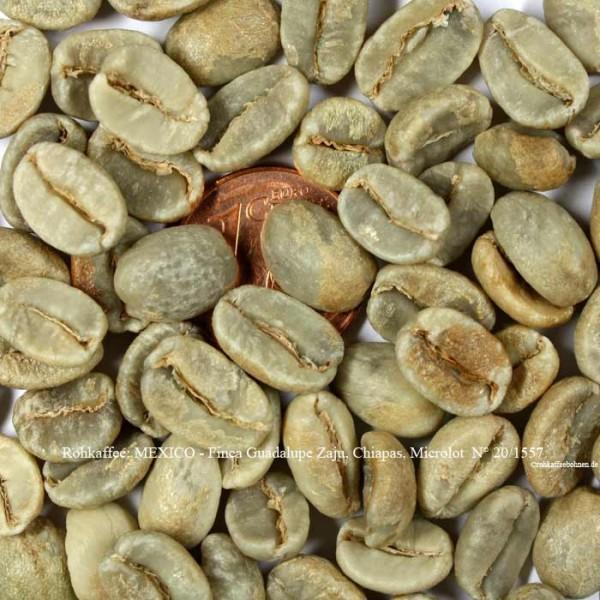 rohkaffee-mexico-finca-guadalupe-zaju-chiapas-microlot-nr.-20-1557-©rohkaffeebohnen.de