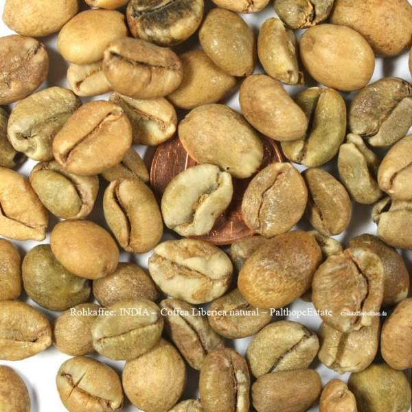 rohkaffee-india-coffea-liberica-natural-palthope-estate-©rohkaffeebohnen.de