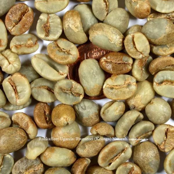 rohkaffee-uganda-rwenzori-kisinga-naturals  © rohkaffeebohnen.de