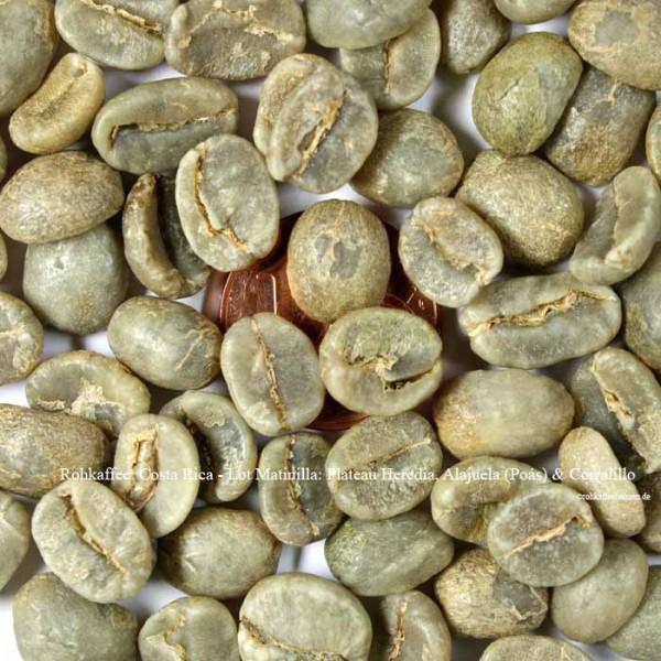 Rohkaffee: Costa Rica - Lot Matinilla: Plateau Heredia, Alajuela (Poás) & Corralillo     ©rohkaffeebohnen.de