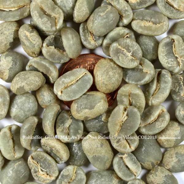 rohkaffee-guatemala-finca-san-rafael-urias-valdes-coe-2018-©rohkaffeebohnen.de