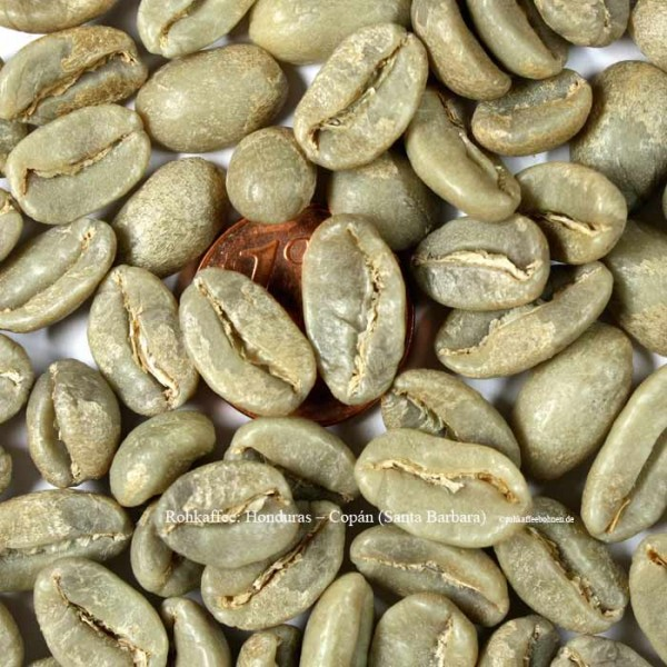 rohkaffee-honduras-copán-santa-barbara-rohkaffeebohnen.de