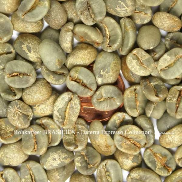 Rohkaffee: BRASILIEN - Daterra Espresso Collection  ©rohkaffeebohnen.de