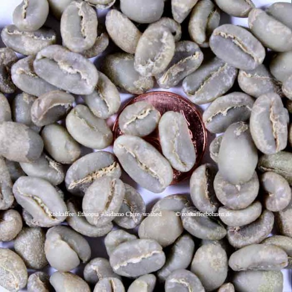 ETHIOPIA - SIDAMO Chire washed - Gr.1, Microlot