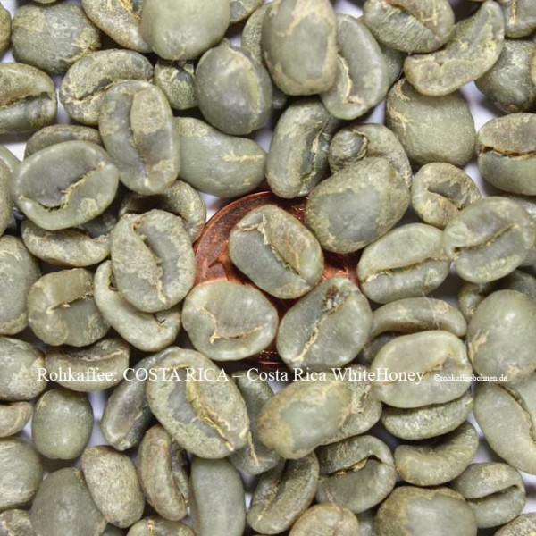 COSTA RICA Finca Volcanic - White Honey