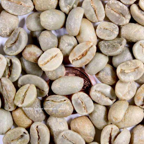 Espresso Seleccion del Catador