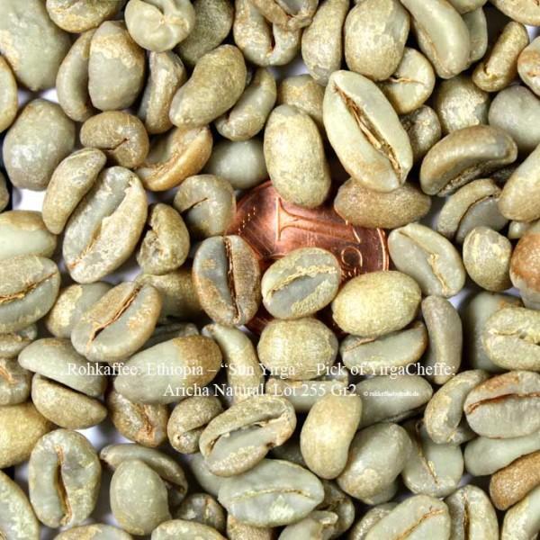 "Rohkaffee: Ethiopia – ""Sun Yirga"" –Pick of YirgaCheffe; Aricha Natural, Lot 255 Gr2.  ©rohkaffeebohnen.de"
