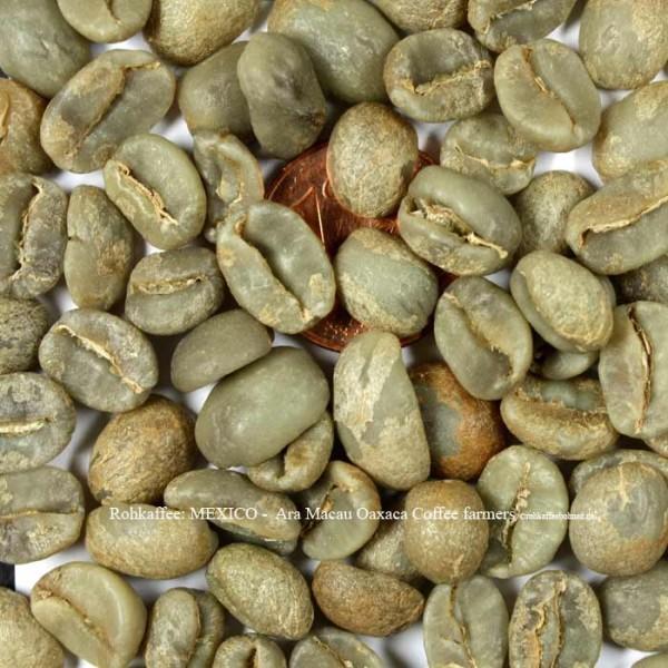 rohkaffee-mexico-ara-macau-oaxaca-coffee-farmers-©rohkaffeebohnen.de