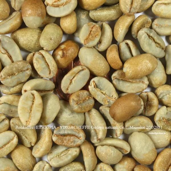 rohkaffee-ethopia-yirgacheffe-gediyo-natural-gr.1-microlot 20-02981-rohkaffeebohnen.de