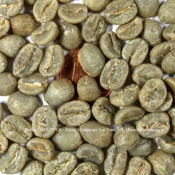 rohkaffee-kenya-estate-muchunga-lot-fram-ab-microlot -©rohkaffeebohnen.de