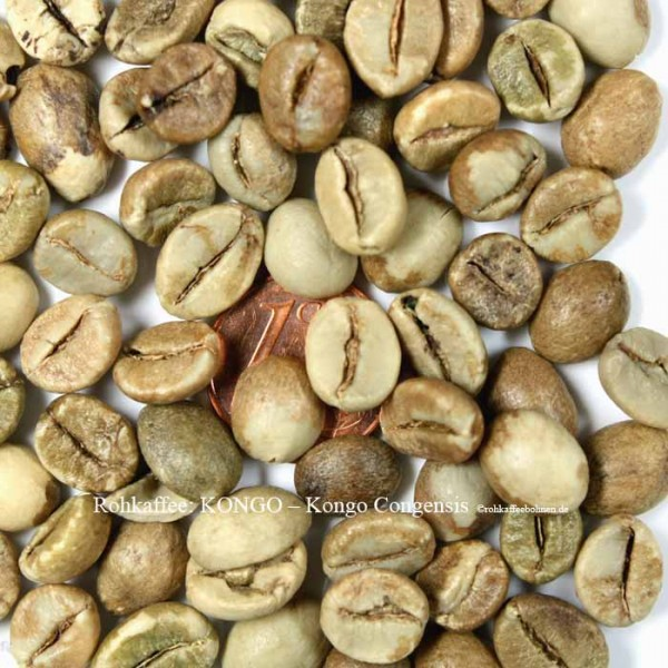 Kongo - Coffea Congensis Screen19, AAA - Natural, Handpicked