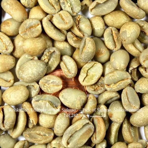 rohkaffee-ethiopia–Sun-Sidamo–pick-of-sidamo-shakiso-natural-lot-282-grad 1- ©rohkaffeebohnen.de