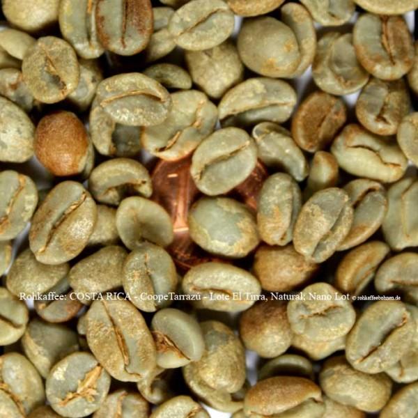 Rohkaffee: COSTA RICA - CoopeTarrazú - Lote El Tirra, Natural; Nano Lot © rohkaffeebohnen.de