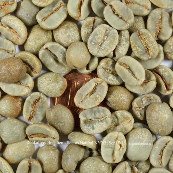 Rohkaffee: Brasilien -Santos Natural, NY 2/3; Scr.17/18