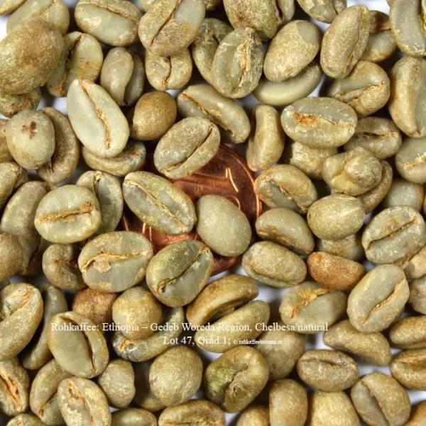 rohkaffee-ethiopia–chelbesa-natural-lot-47-grad 1- ©rohkaffeebohnen.de